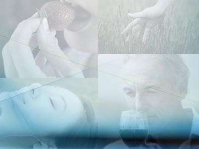 meditazione guidata dei cinque sensi tantra tantrica aprire i sensi