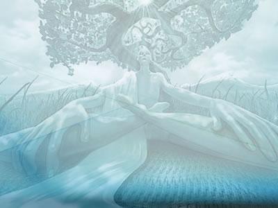 meditazione guidata per il radicamento dell'albero radici grounding