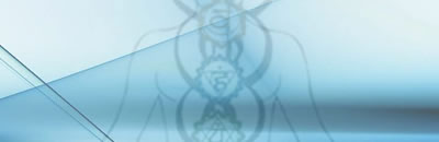 livello 3 meditazione guidata sui chakra respiro energia vitale 1 kundalini mantra induismo